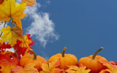Fall Leaves, Pumpkins, Sky